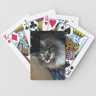 Cartes de jeu irrésistibles de bicyclette de chat jeu de cartes