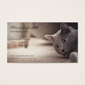 Cartes De Visite Animal de compagnie, beau chat.