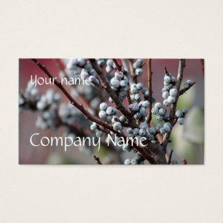 Cartes De Visite Bayberries