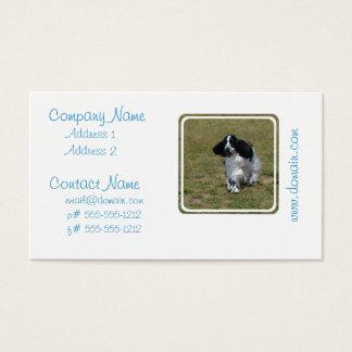 Cartes De Visite Cocker anglais adorable