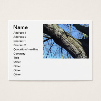 Cartes de visite de chirurgien d'arbre