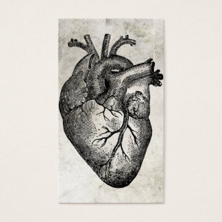 Cartes de visite de docteur Heart Anatomy