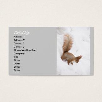 Cartes De Visite Écureuil d'hiver