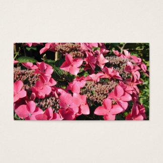 Cartes De Visite Hortensia. Fleurs roses