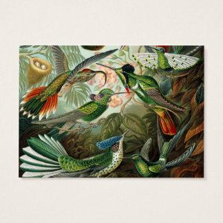Cartes De Visite Illustration scientifique de colibris vintages
