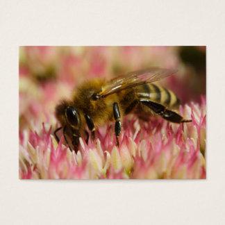 Cartes De Visite Macro occidental d'abeille de miel
