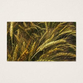 Cartes De Visite Marché de grain