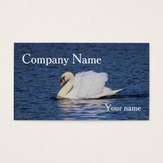 Cartes De Visite Natation de cygne sur le lac bleu profond