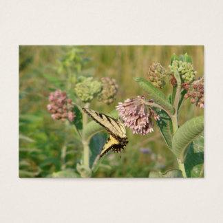 Cartes De Visite Papillon et Milkweed