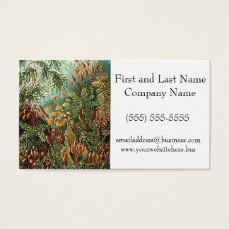Cartes De Visite Peinture de champignon d'herbe de mousse de