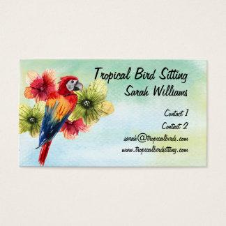 Cartes De Visite Perroquet coloré lumineux de garde d'enfants
