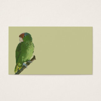 Cartes De Visite Perroquet vert
