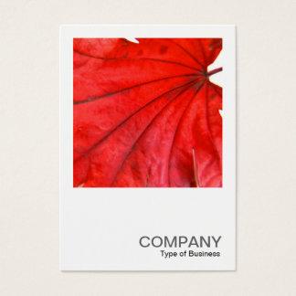 Cartes De Visite Photo carrée 0352 - feuille d'érable japonais