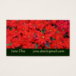 Cartes De Visite Photo florale des poinsettias I de vacances rouges