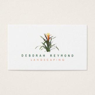 Cartes De Visite plante de bromeliad. aménagement du blanc simple