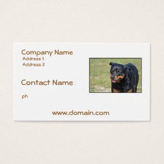 Cartes De Visite Rottweiler sans astuce