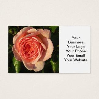 Cartes De Visite S'est levée la belle fleur rose