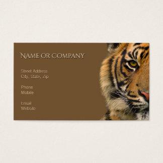 Cartes De Visite Tigre