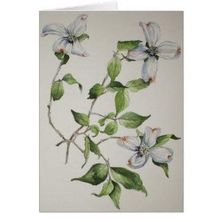 Cartes de voeux botaniques