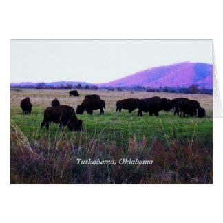 Cartes de voeux de Choctaw (Yunnush)