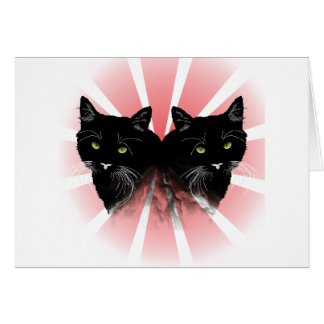 Cartes folles de chat