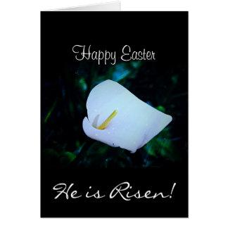 Cartes heureuses de zantedeschia de Pâques