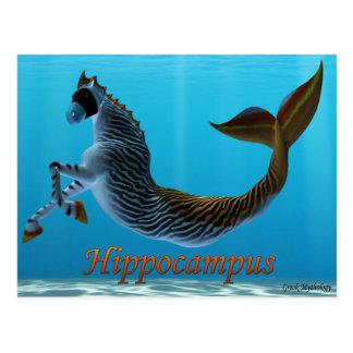 Cartes postales de mythologie grecque : Hippocampe
