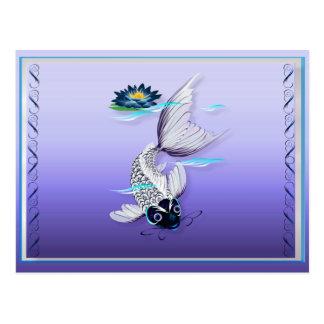 Cartes postales Koi-Bleues blanches de lis