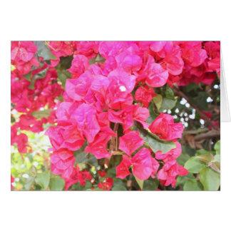 Cartes pour notes de roses indien