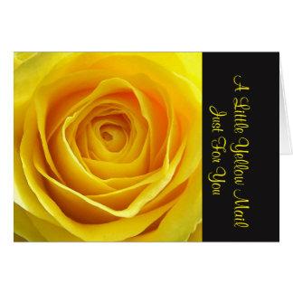 Cartes pour notes Endo et jaunes de courrier