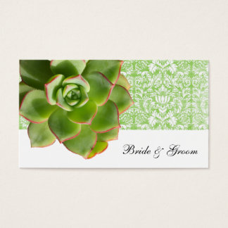 Cartes vintages succulentes vertes d'endroit de