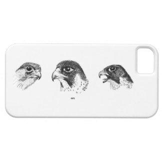 Cas de téléphone de Falcory I Étuis iPhone 5