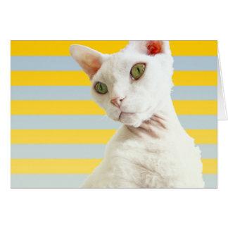 Casper sur le jaune barre la carte d'anniversaire