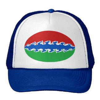 Casquette Gnarly de drapeau de la Gambie