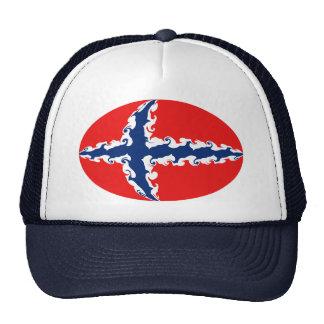Casquette Gnarly de drapeau de la Norvège
