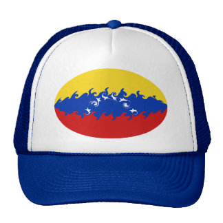 Casquette Gnarly de drapeau du Venezuela
