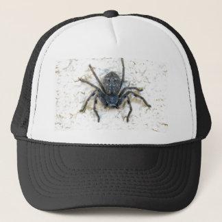Casquette Grande araignée femelle de chasseur,