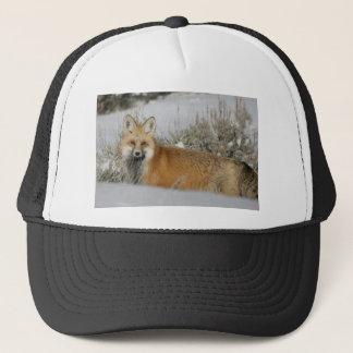 Casquette idée de cadeau d'animal sauvage de rouge-renard