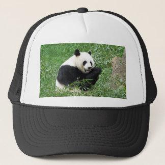 Casquette Panda géant mangeant le bambou