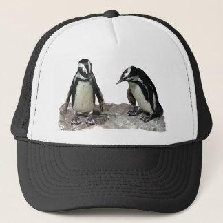 Casquette Pingouins