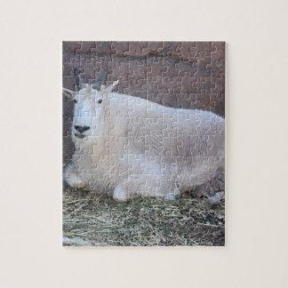 Casse-tête de chèvre de montagne rocheuse puzzle