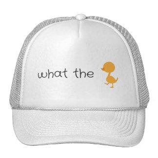 ce qui le canard casquette de camionneur