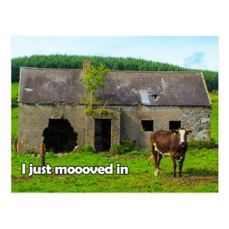 Celtic Irlande que je moooved juste en carte Cartes Postales