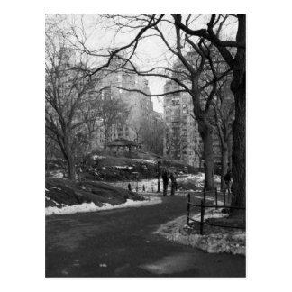 Central Park noir du blanc NY Cartes Postales