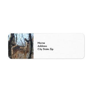 Cerfs communs 784 étiquette d'adresse retour