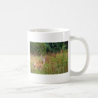 Cerfs communs dans regarder de champ mug