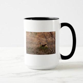 Cerfs communs d'oeufs de poisson sur la tasse de