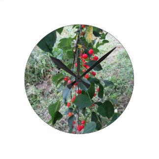 Cerises rouges de Montmorency sur l'arbre dans le Horloge Ronde