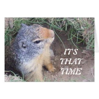 C'est carte du jour de ce Groundhog heureux de