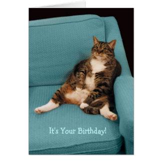 C'est votre grande grosse carte de voeux de chat